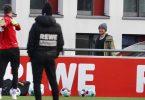 1. FC Köln: Jorge Meré, Sebastian Andersson und Timo Horn fehlen