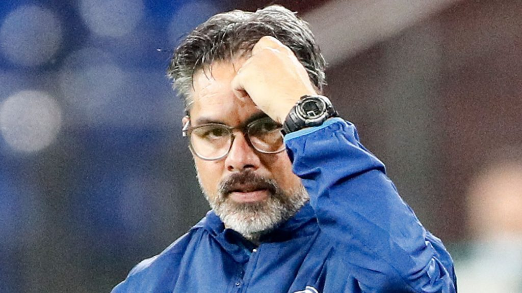 Schalke's head coach David Wagner reacts during the German Bundesliga soccer match between FC Schalke 04 and Werder Bremen in Gelsenkirchen, Germany, Saturday, Sept. 26, 2020. Schalke dismissed Wagner today after a series of 18 consecutive winless matches. (AP Photo/Martin Meissner)